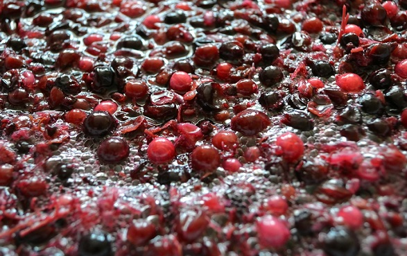 Grapes fermenting GettyImage