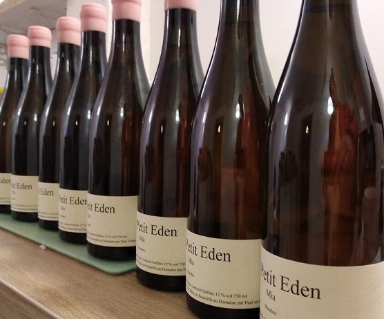 Paul Eden bottles resize